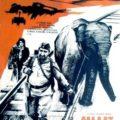 Солдат и слон (1977)