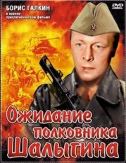 Ожидание полковника Шалыгина (CCCР, 1981)