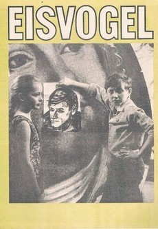 Зимородок (СССР, 1972)