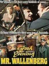 добрый вечер господин валленберг фильм 1990