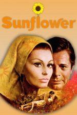 подсолнухи фильм 1970 смотреть онлайн в хорошем качестве бесплатно