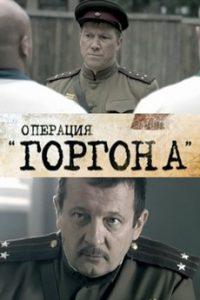 Операция «Горгона» (Россия, 2011)