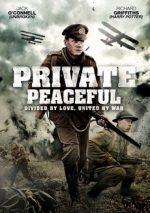 рядовой писфул фильм 2012 смотреть онлайн бесплатно